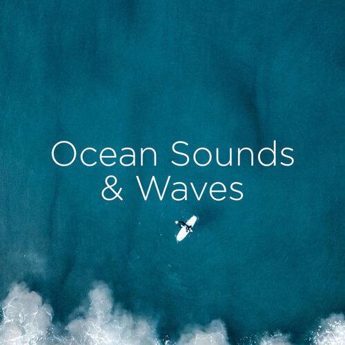 Ocean Sounds & Waves