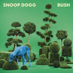 BUSH (狗狗叢林)