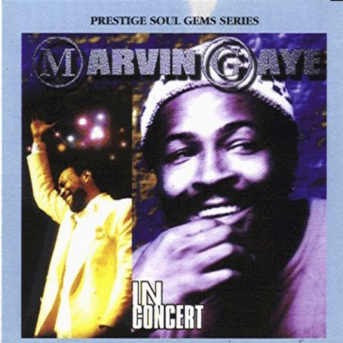Marvin Gaye in Concert