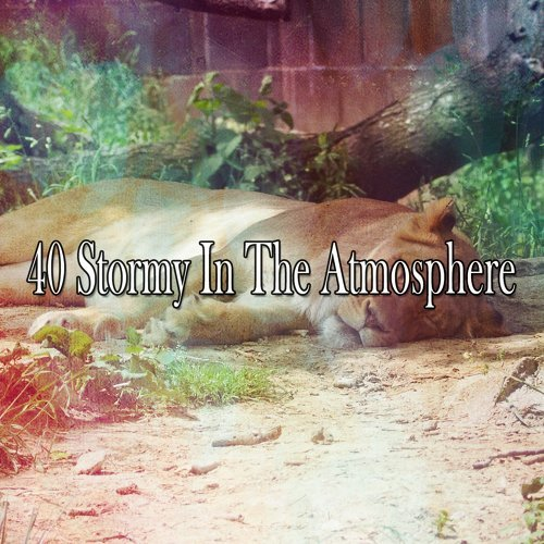 40 Stormy in the Atmosphere