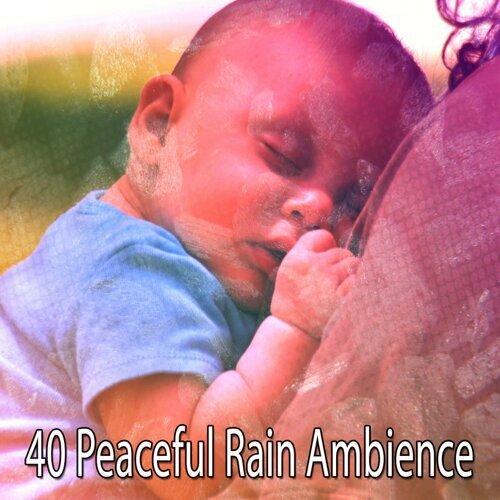40 Peaceful Rain Ambience