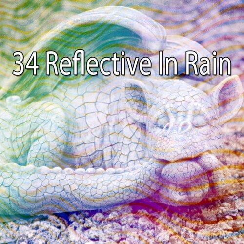 34 Reflective in Rain