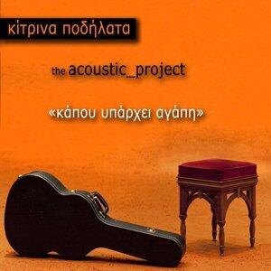 Kapou Yparhei Agapi - The Acoustic Project