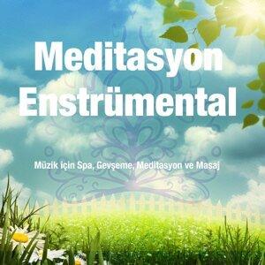 Meditasyon Enstrümental: Müzik için Spa, Gevşeme, Meditasyon ve Masaj