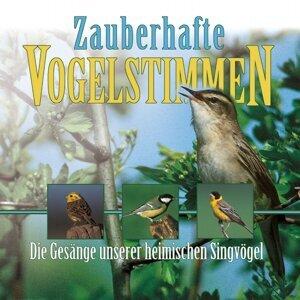 Zauberhafte Vogelstimmen - Bird Voices