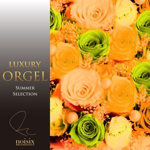 Luxury Orgel Summer Song Selection Vol.1