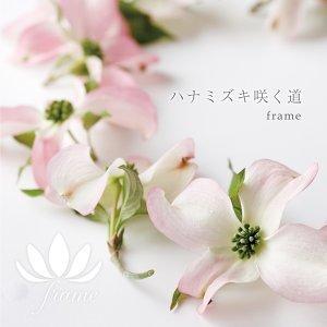 ハナミズキ咲く道 (Hanamizuki Saku Michi)
