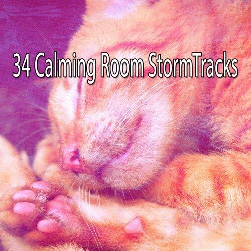 34 Calming Room Stormtracks