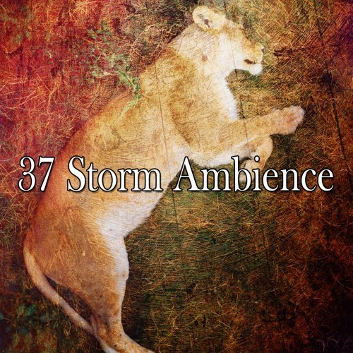 37 Storm Ambience
