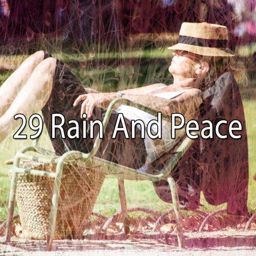 29 Rain and Peace
