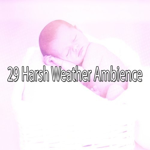 29 Harsh Weather Ambience