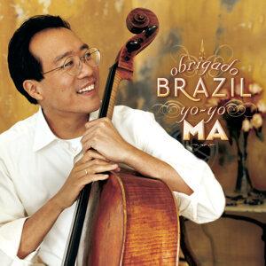 Obrigado Brazil (巴西情迷)