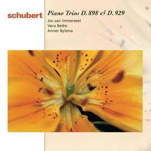 Schubert: Piano Trios D.898 & 929