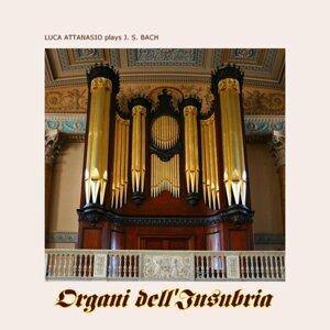 Luca Attanasio plays J.S. Bach - Organi dell'Insubria