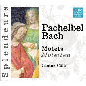 DHM Splendeurs: Pachelbel/Bach: Motets