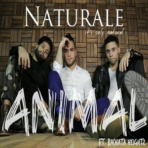 Animal (feat. Bachata Heightz)