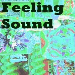 Feeling Sound