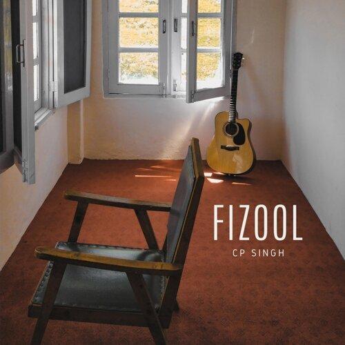 Fizool
