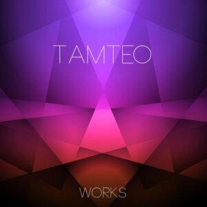 Tamteo Works