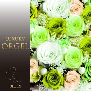 Luxury Orgel J-Pop Hits Vol.10