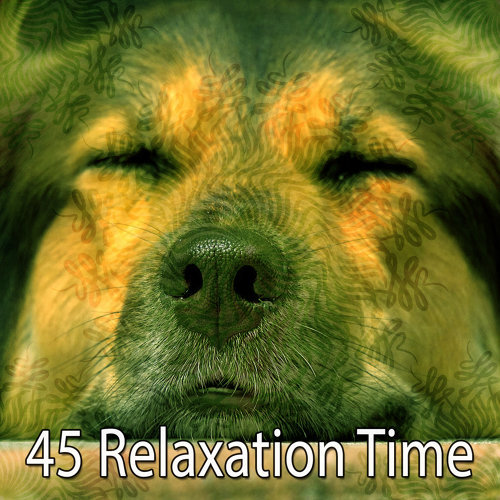 45 Relaxation Time