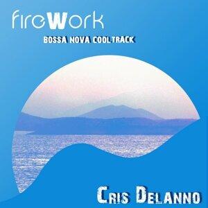 Firework - Bossa Nova Cool Track