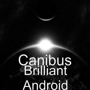 Brilliant Android