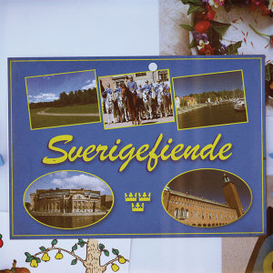 Sverigefiende (Fest mot våldsgrupp)