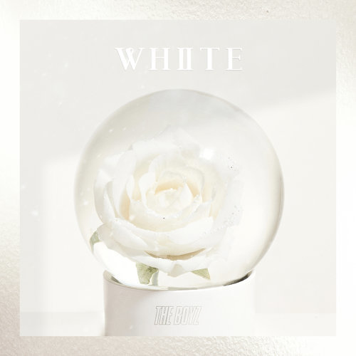THE BOYZ SPECIAL SINGLE [WHITE]