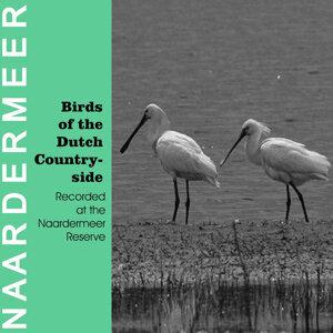 Birds of the Dutch Countryside