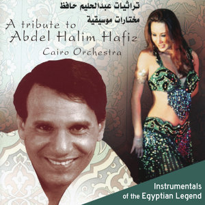 A Tribute to Abdel Halim Hafiz: Instrumentals of the Egyptian Legend