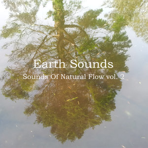 Sounds of Natural Flow Vol. 2