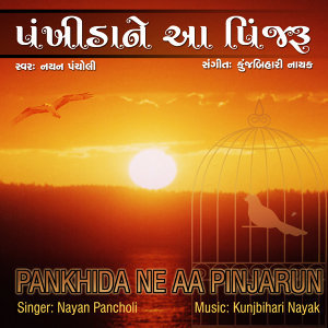 Pankhida Ne Aa Pinjarun