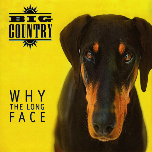 Why the Long Face - Bonus Tracks & Demos