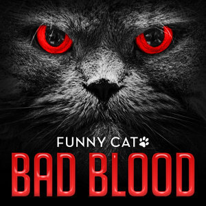 Bad Blood (Funny Cats Singing Version)