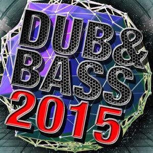 Dub & Bass 2015
