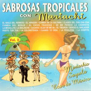 Sabrosas Tropicales Con Mariachi Vol. 2