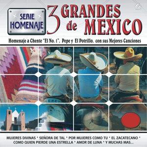 Serie Homenaje 3 Grandes de México