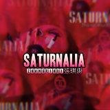 Saturnalia (縱情狂歡)