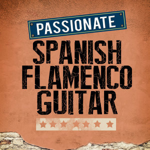 Passionate Spanish Flamenco Guitar