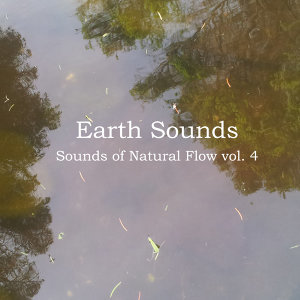 Sounds of Natural Flow Vol. 4