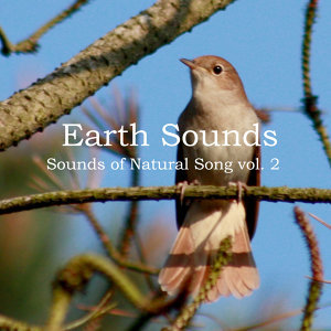 Sounds of Natural Song Vol. 2
