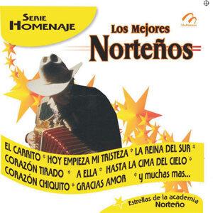 Los Mejores Norteños - Serie Homenaje