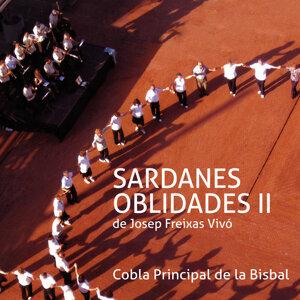 Sardanes Oblidades II