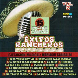 15 Pistas para Cantar - Sing Along: Exitos Rancheros, Vol. 2