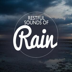 Restful Sounds of Rain