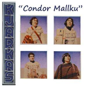 Cóndor Mallku - Bolivia y Su Folklore