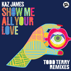 Show Me All Your Love (Todd Terry Remixes)