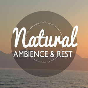 Natural Ambience & Rest