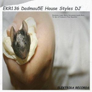 Dadmau5e House Styles DJ Tools